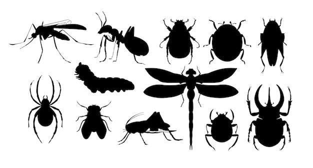 Набор насекомых силуэт рисованной эскиз векторные иллюстрации жуки стрекоза паук
