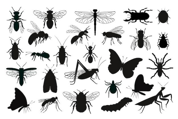 Набор силуэтов насекомых. черные трафареты формы ошибок, наброски существ науки энтомологии, векторные иллюстрации контуры жуков, изолированные на белом фоне