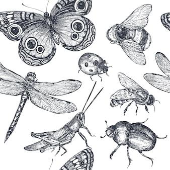 곤충은 잠자리, 파리, 나비, 딱정벌레, 메뚜기와 함께 장식적인 매끄러운 패턴을 스케치합니다. 손으로 그린 벡터 일러스트 레이 션
