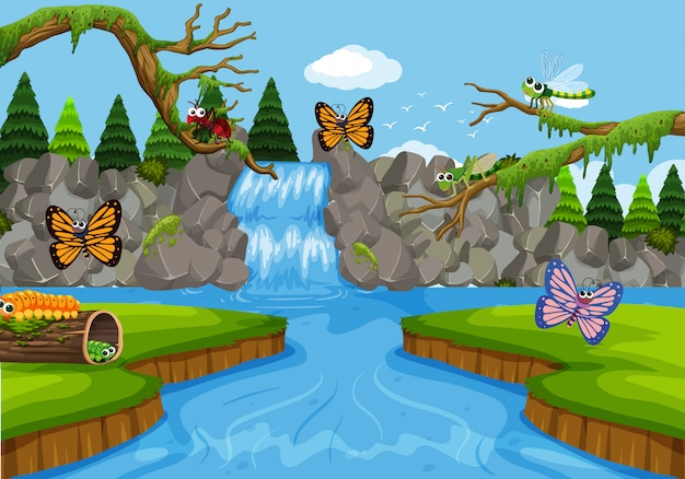 Insects in waterfall scene