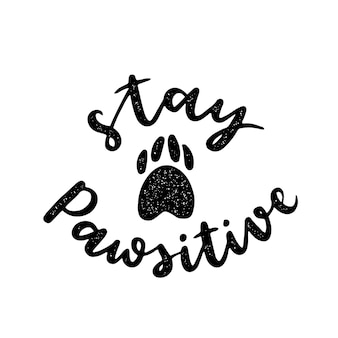 Inspirational quotes about cat, dog and domestical pets. hand written phrases.