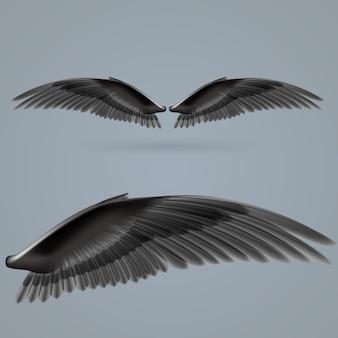 Inspire wings