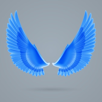 翼を刺激する