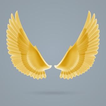 Вдохновить крылья