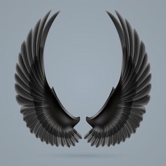 灰色の背景に個別に描かれた感動的な黒い翼