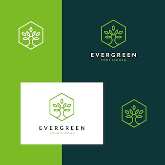 Inspiring evergreen logos, trees, leaves, flowers with stylish outline designs