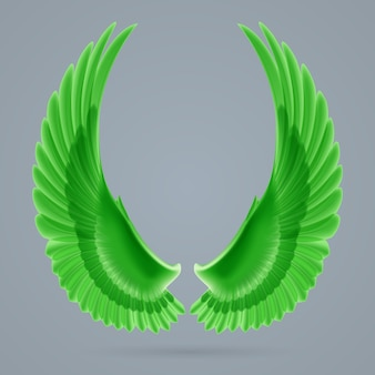 Inspiring green wings drawn separately on a gray background