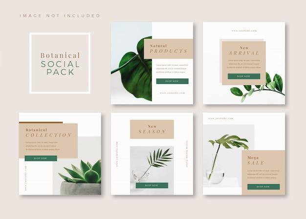 Instagram、facebook、カルーセルの植物のきれいなシンプルな正方形ソーシャルメディアテンプレート
