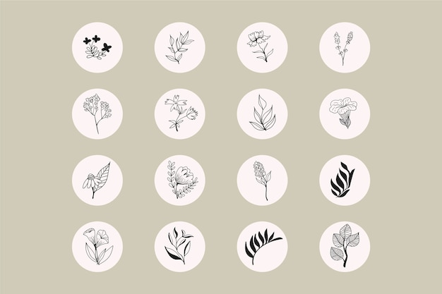 Instagram hand drawn floral stories highlights
