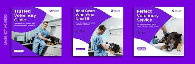 Коллекция постов в инстаграм для ухода за домашними животными с собакой-ветеринаром премиум-дизайн шаблона баннера