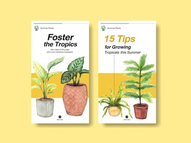 Progettazione del modello di storia di instagram con piante estive e piante da appartamento per i social media
