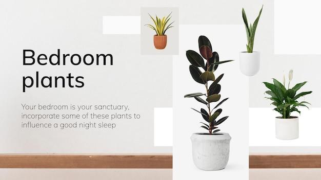インテリアテンプレートベクトル寝室の植物