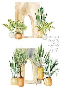 アーチ道の観葉植物コレクションの近くの緑の鉢植えの植物のインテリアシーン