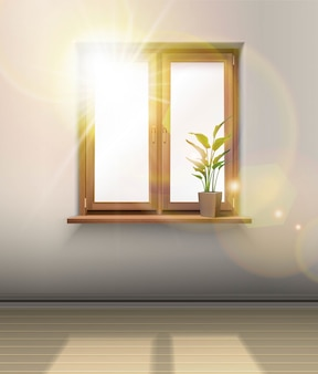 Interior. wooden window with a plant and sun shining through the glass.