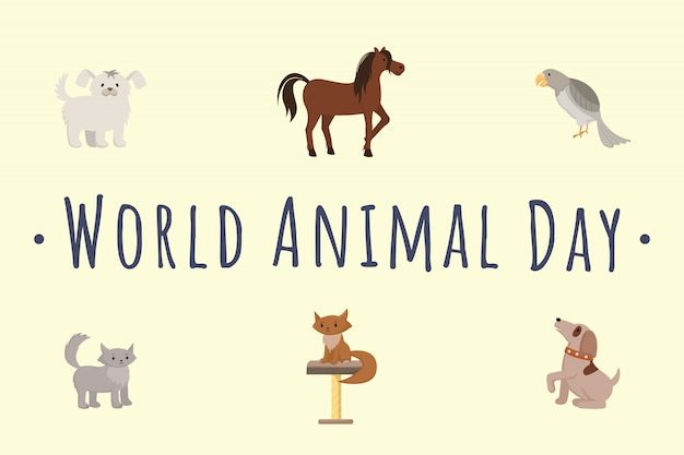 International animal day template. cartoon cats, dogs, horse, parrot isolated illustrations