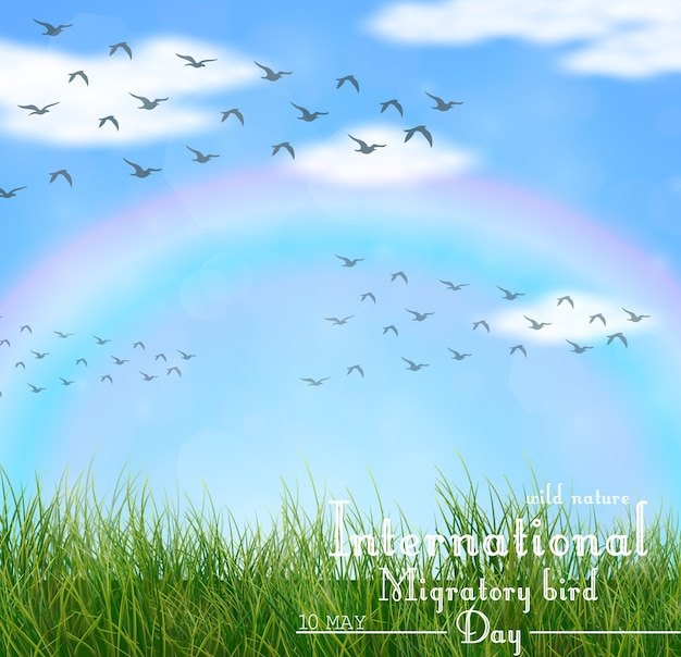 International migratory bird day background