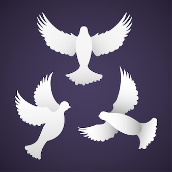 International peace day with dove cartoon