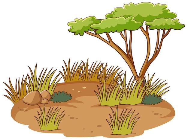 고립 된 아프리카 숲 장면