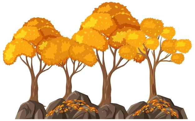 白い背景の上の孤立した秋の木々