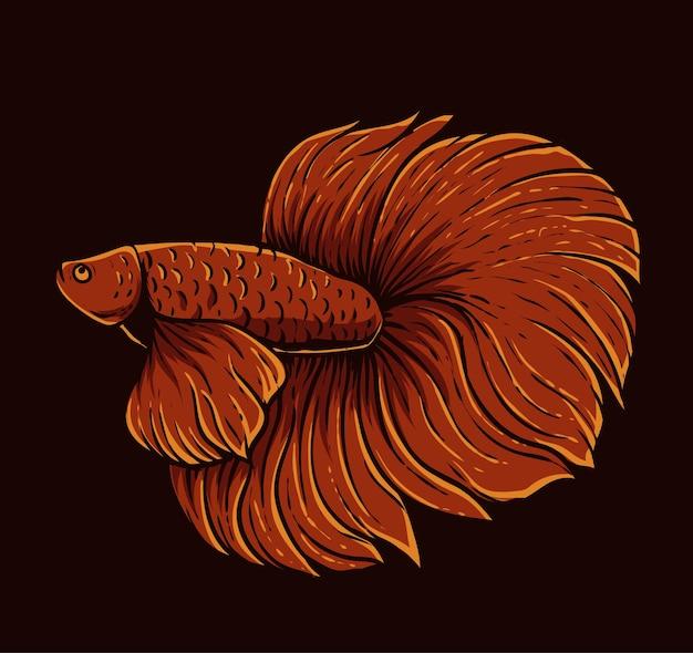 Изолированные бета рыба красного цвета на черном фоне