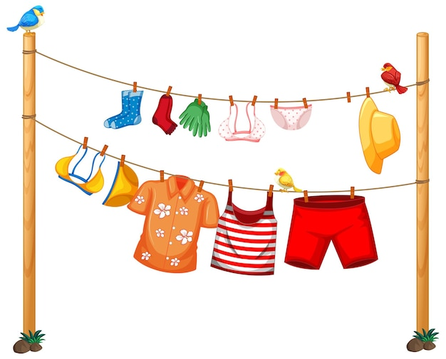 Isolated clothes hanging on clothesline on white background
