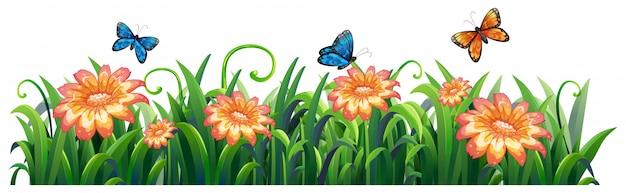 Изолированная природа цветка на белой предпосылке Бесплатные векторы