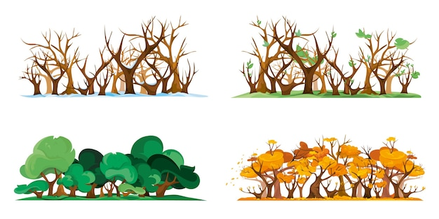 Isolated forest at different times of year. four season in cartoon style.