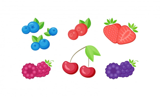 Isolated fresh berries with slices collection