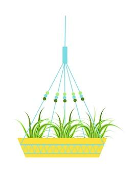 綿コードで作られた孤立した吊り下げ式の詳細なプランター、屋内および屋外またはオフィス用の鉢植え、ランドスケープガーデン。