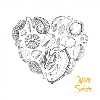 The isolated heart of nuts and seeds