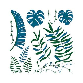 고립 된 정글 잎과 덩굴입니다. 열대 테마 템플릿입니다. 평면 스타일의 벡터 일러스트 레이 션
