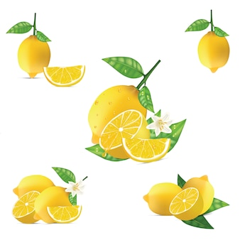 Isolated lemon vector set