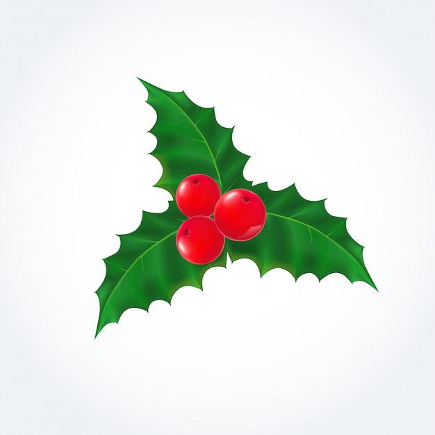 mistletoe vectors photos and psd files free download rh freepik com christmas mistletoe vector christmas mistletoe vector
