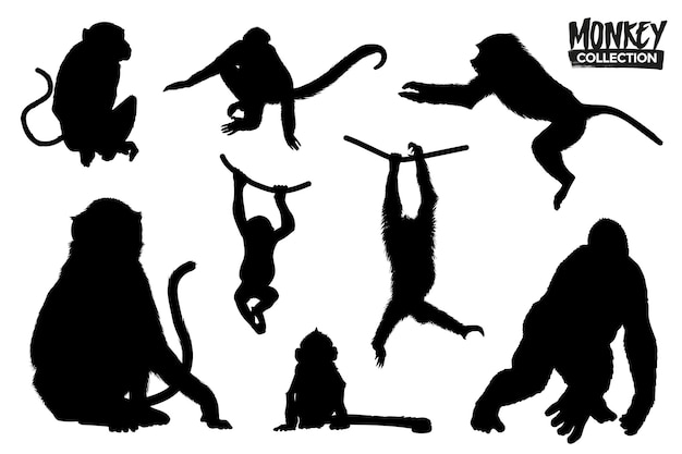 Изолированная коллекция силуэтов обезьяны. графические ресурсы.