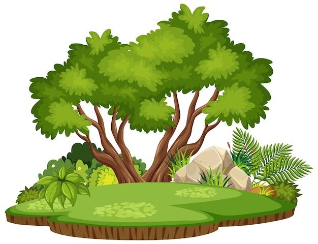 孤立した自然の森の島