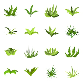 Isolated object of garden and grass symbol. collection of garden and shrub stock symbol for web.