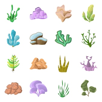 Isolated object of underwater and aquarium sign. set of underwater and ocean stock symbol for web.
