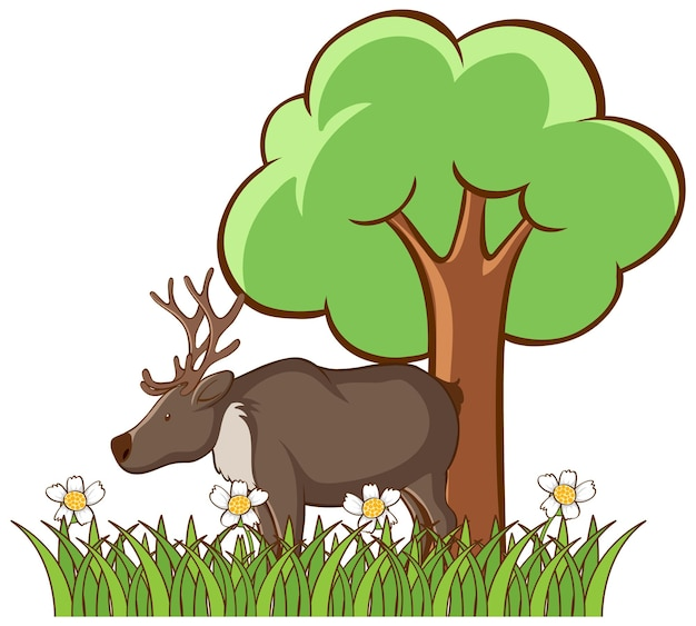 Isolated picture of deer in the park