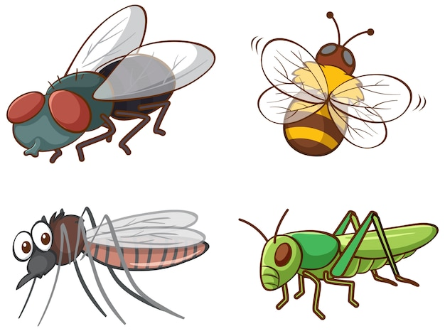 Isolated picture of different bugs