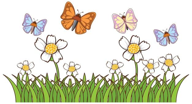 정원에서 많은 나비의 고립 된 그림