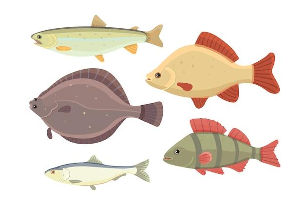 孤立した川の魚。淡水海の漫画の魚のセットです。動物相の海のイラスト