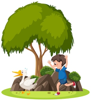 Isolated scene with a boy chasing a goose