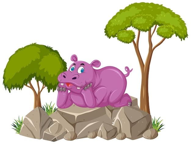 かわいいカバが石の上に横たわっている孤立したシーン