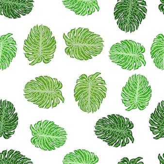 トロピカルグリーンのモンステラの葉飾りとの分離されたシームレスパターン。白色の背景。