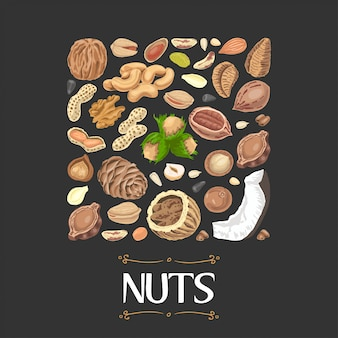 Isolated square of nuts and seeds