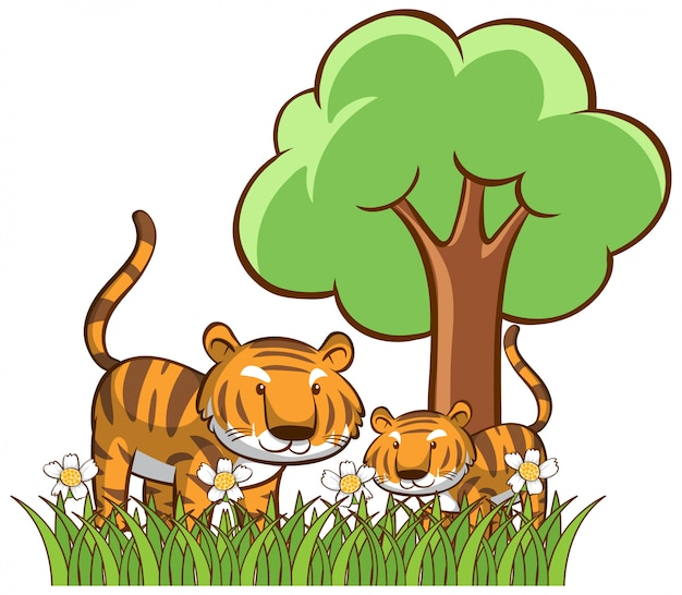 Isolated tigers in the garden