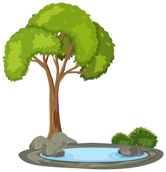 白い背景の上の池と孤立した木