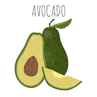 Isolated vector illustration with avocado