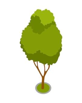 アイソメトリック3dベクトルパーク要素。庭の木または低木。緑の環境の風景デザインイラスト。自然要素の孤立したアイコン。