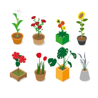 Isometric assorted flowers